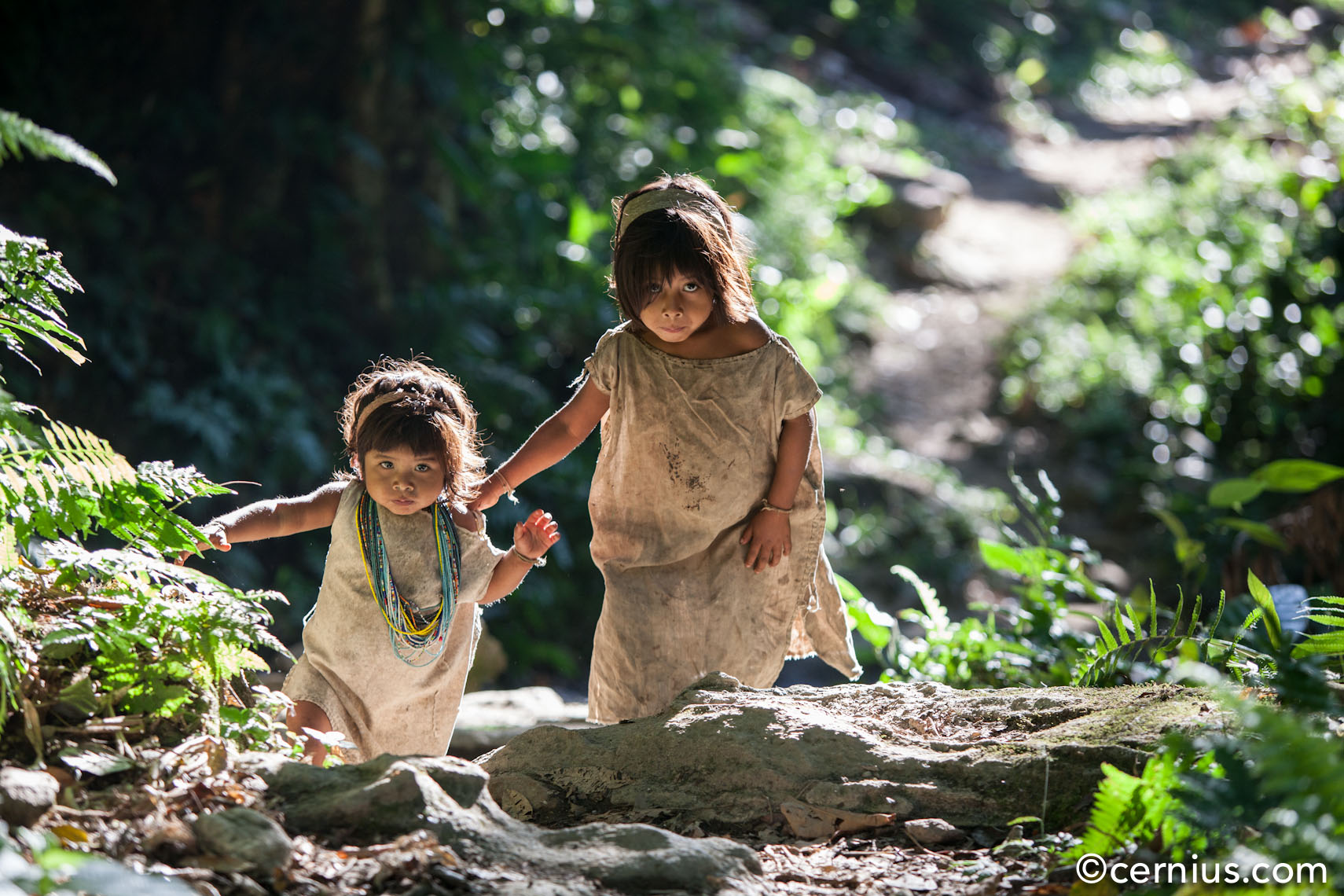 Indigenous children walk a path near the Ciduad Perdida (the Lost City) of Colombia, 2012 | Juozas Cernius