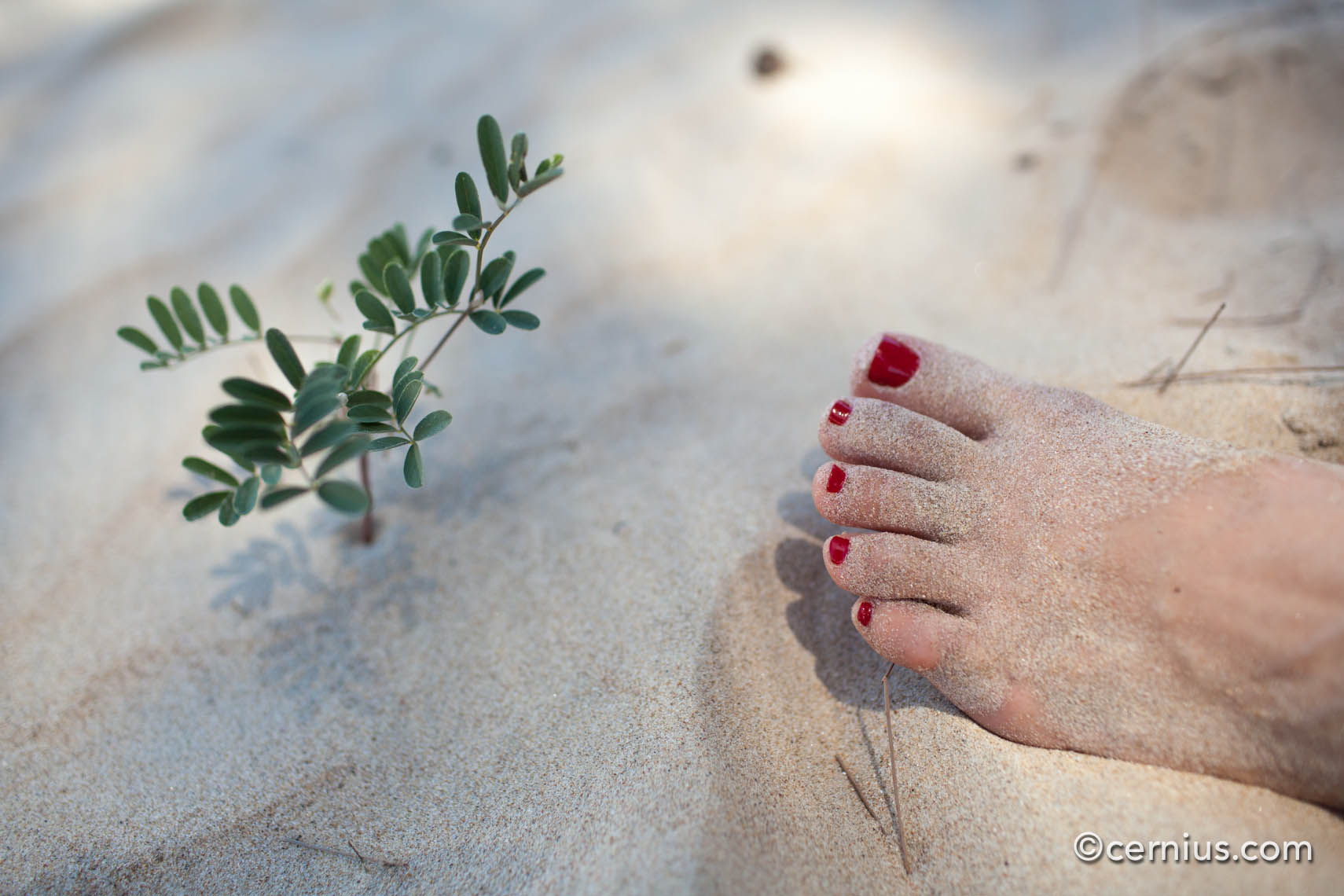 Beach Foot Fetish | Juozas Cernius